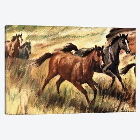 Gee-Gees Go Galloping Canvas Print #HEM34} by Hemingway Design Canvas Print