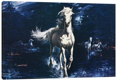 Surf Galloper Canvas Print #HEM77