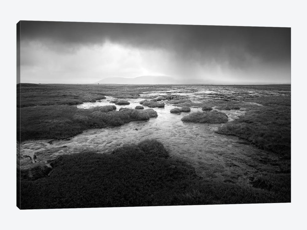 Scale Moor by Martin Henson 1-piece Canvas Art