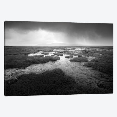Scale Moor Canvas Print #HEN12} by Martin Henson Art Print
