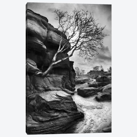 Outcrop Canvas Print #HEN18} by Martin Henson Canvas Print