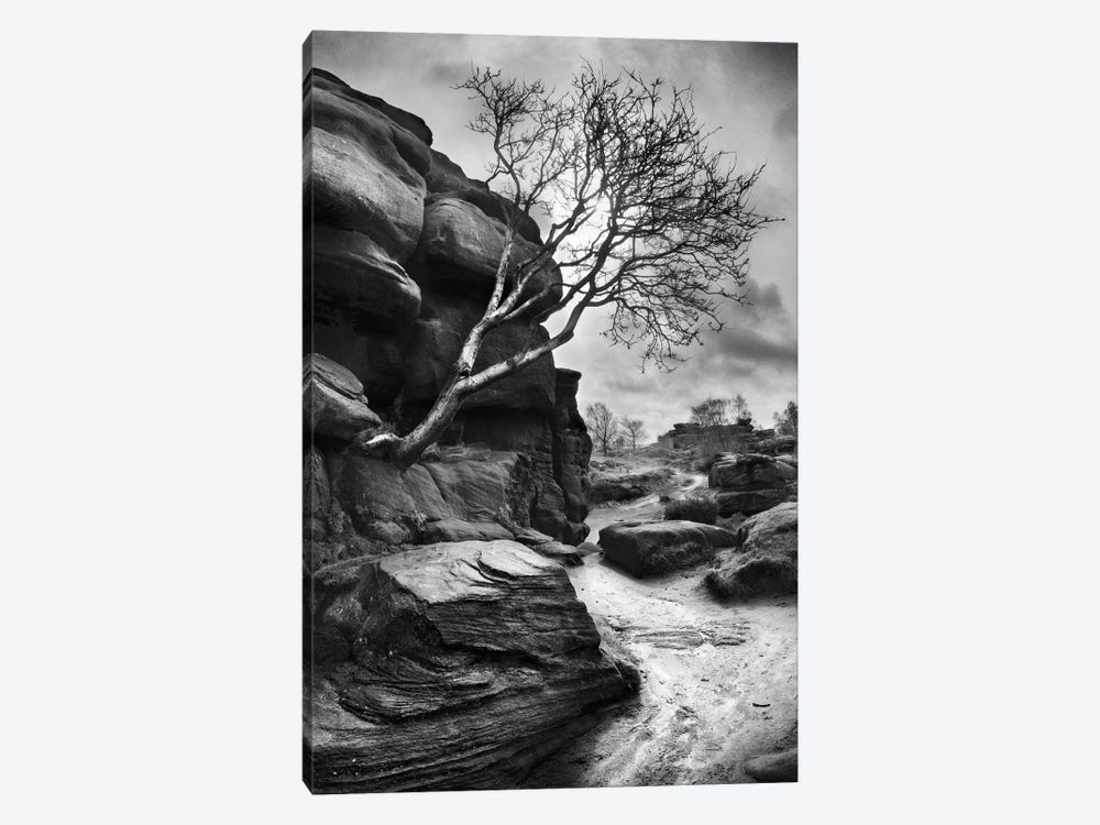 Outcrop by Martin Henson 1-piece Canvas Wall Art
