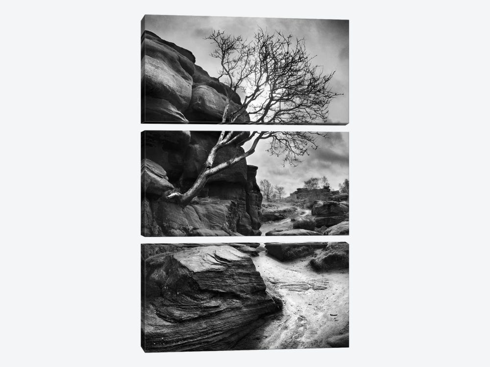 Outcrop by Martin Henson 3-piece Canvas Art