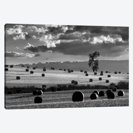 Rolls Of Hay Canvas Print #HEN20} by Martin Henson Canvas Wall Art