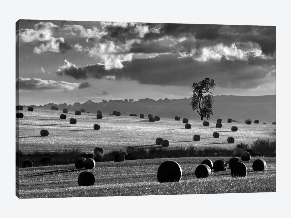 Rolls Of Hay by Martin Henson 1-piece Canvas Art Print