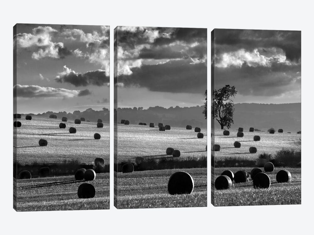 Rolls Of Hay by Martin Henson 3-piece Canvas Art Print