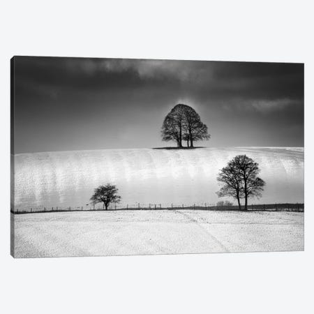 Winter Triangle Canvas Print #HEN21} by Martin Henson Canvas Wall Art