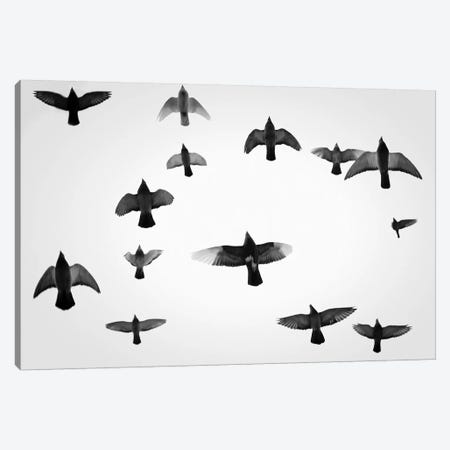 In The Skies I Canvas Print #HEN22} by Martin Henson Canvas Wall Art