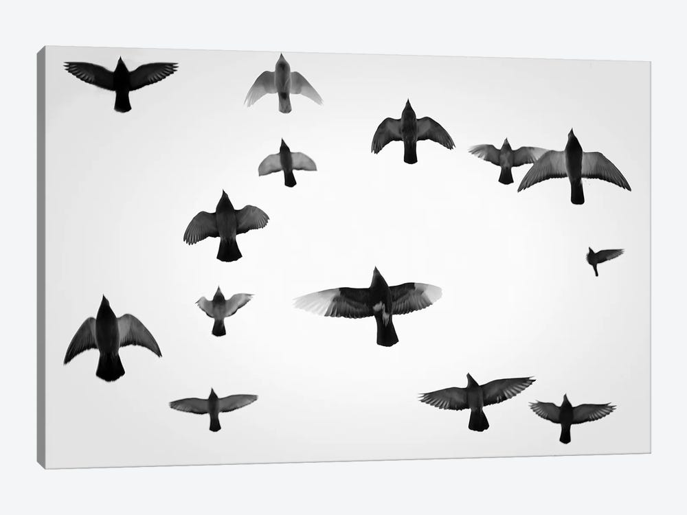 In The Skies I by Martin Henson 1-piece Canvas Art Print