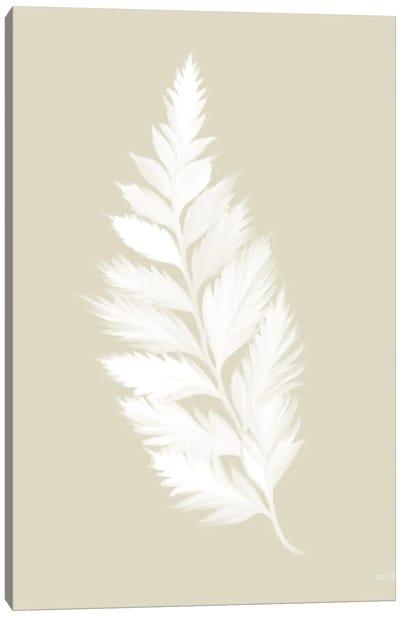 Botanical White Fern Canvas Art Print