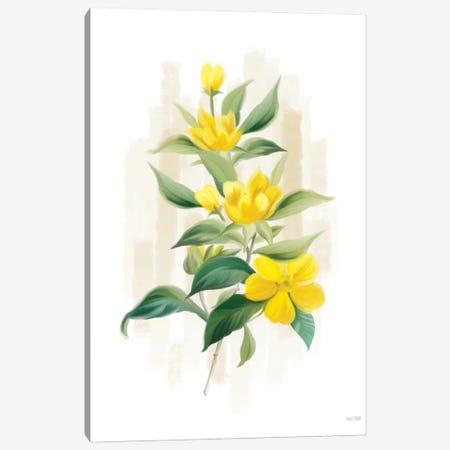 Goldilocks I Canvas Print #HFE109} by House Fenway Art Print