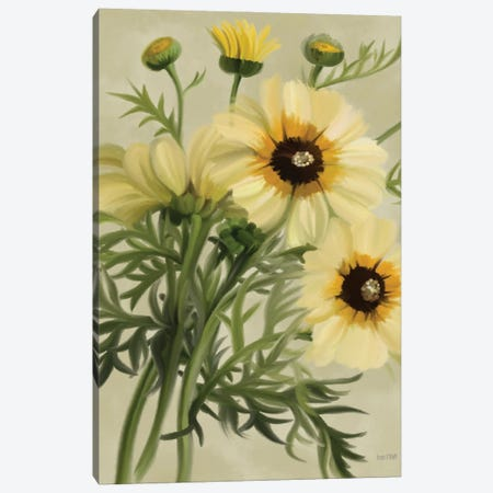 Moody Daisies Canvas Print #HFE118} by House Fenway Canvas Wall Art