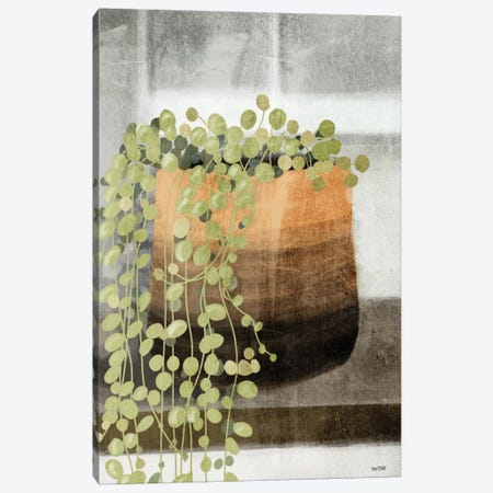 String of Pearls I Canvas Print #HFE23} by House Fenway Canvas Art Print