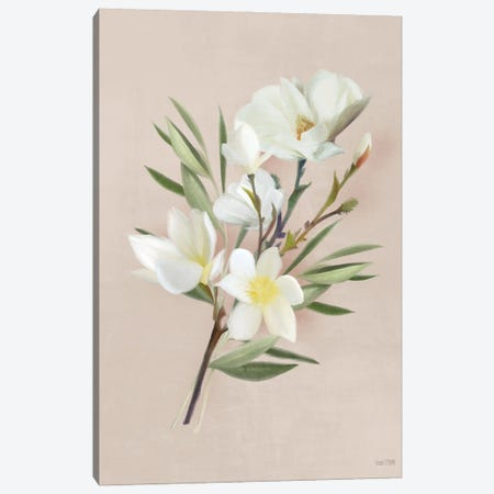 Spring Magnolias Canvas Print #HFE64} by House Fenway Canvas Art