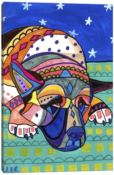 Akita 3 Canvas Art Print