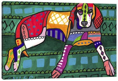 American Coonhound 16  Canvas Art Print