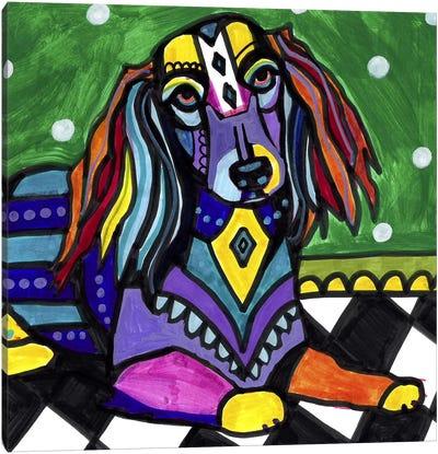 Dachshunds Longhair Canvas Print #HGL29