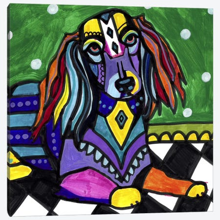 Dachshunds Longhair 3-Piece Canvas #HGL29} by Heather Galler Canvas Print
