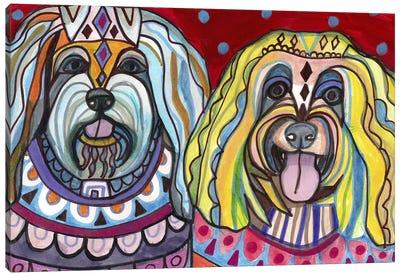 Havanese Canvas Art Print