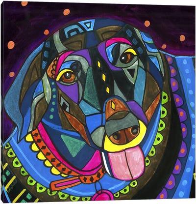 Labradors Black Lab Canvas Print #HGL34