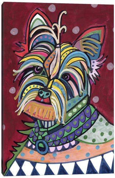 Yorkie Canvas Print #HGL46