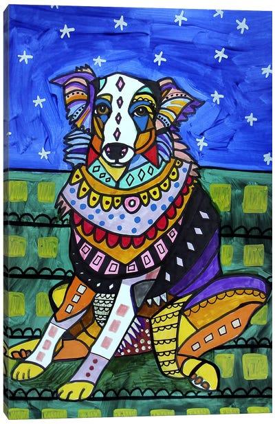 Australian Shepherd Lola Canvas Art Print