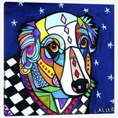 Australian Shepherd Zoe Canvas Print #HGL66} by Heather Galler Canvas Wall Art