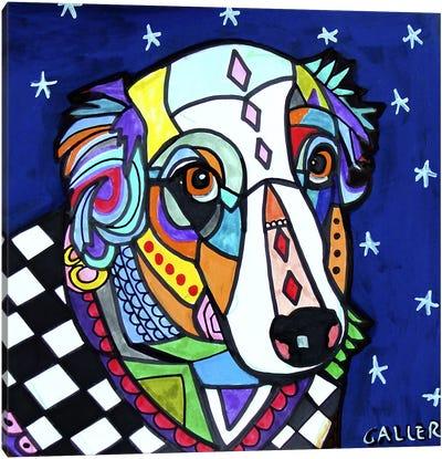 Australian Shepherd Zoe Canvas Art Print