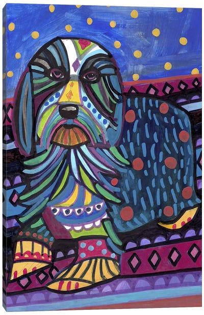 Bearded Collie Canvas Art Print