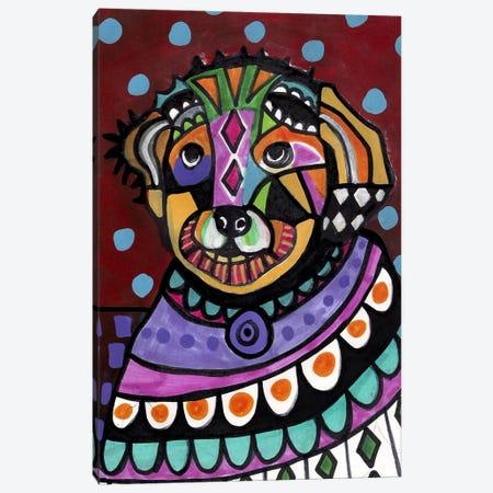 Bichon Canvas Print #HGL83} by Heather Galler Art Print