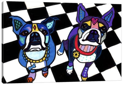 Boston Terriers 2 Dogs Canvas Art Print