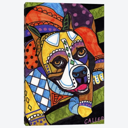 Boxer #2 Canvas Print #HGL88} by Heather Galler Art Print