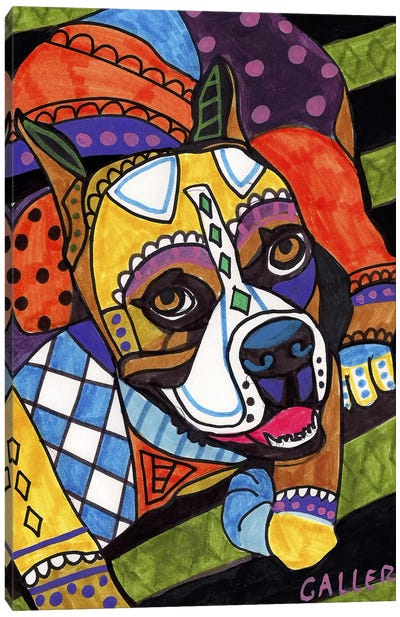 Boxer #2 Canvas Art Print