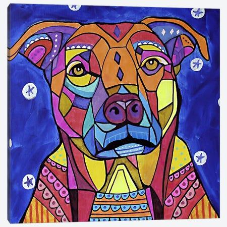 Boxer Pit Canvas Print #HGL89} by Heather Galler Canvas Art Print