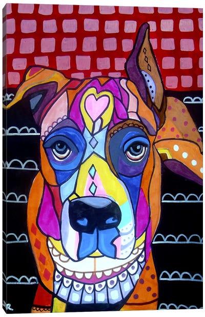 Boxer Sophie Canvas Print #HGL90