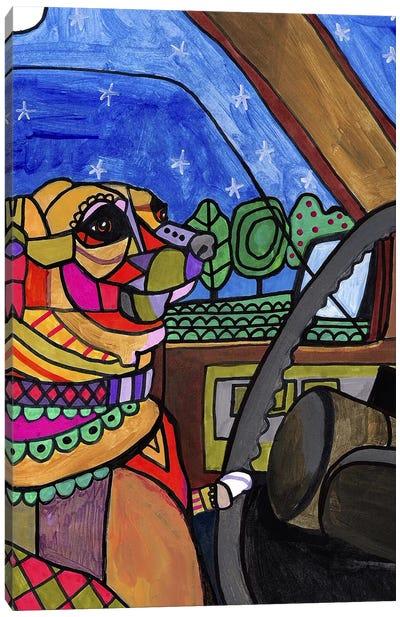 Chihuahua Car Canvas Print #HGL94