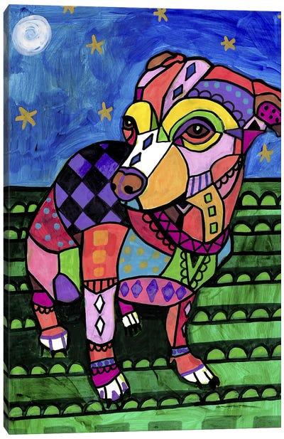 Chihuahua Chicy Canvas Art Print