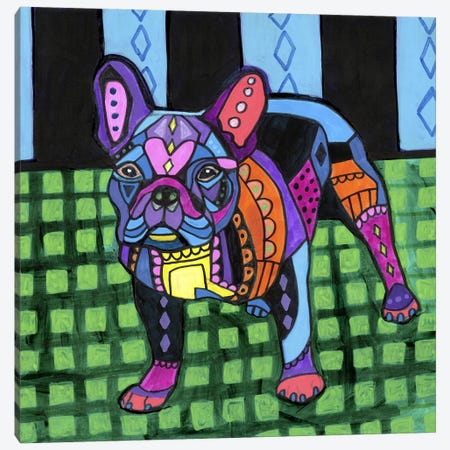 French Bulldog #2 Canvas Print #HGL98} by Heather Galler Canvas Art