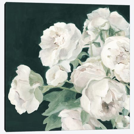 Peonies on Dark Green Canvas Print #HGM15} by Marilyn Hageman Canvas Wall Art