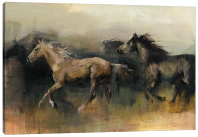 Roaming the West Flipped by Marilyn Hageman Canvas Art Print