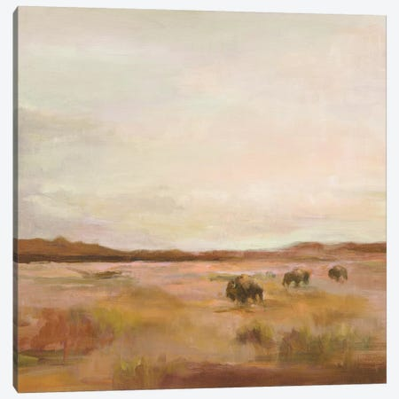 Buffalo Under Big Sky Warm Canvas Print #HGM9} by Marilyn Hageman Canvas Art