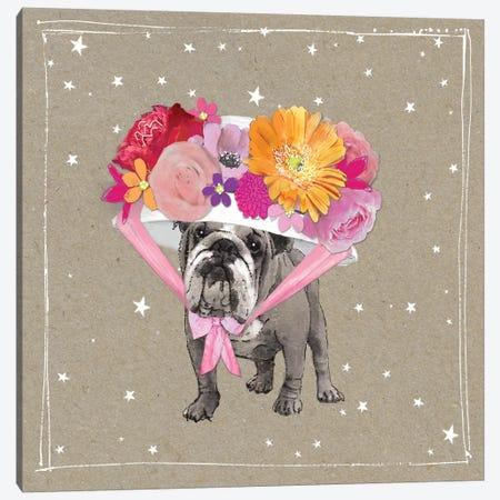 Fancypants Wacky Dogs IV Canvas Print #HGO40} by Hammond Gower Canvas Wall Art