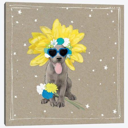 Fancypants Wacky Dogs VI Canvas Print #HGO42} by Hammond Gower Canvas Artwork