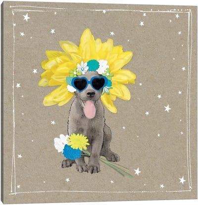 Fancypants Wacky Dogs VI Canvas Art Print