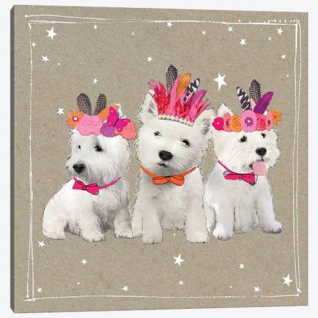 Fancypants Wacky Dogs VIII Canvas Print #HGO44} by Hammond Gower Canvas Print