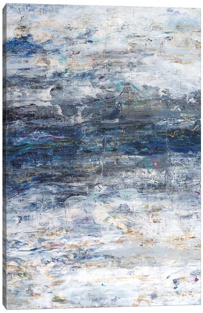 An Ocean Of Sky Canvas Art Print