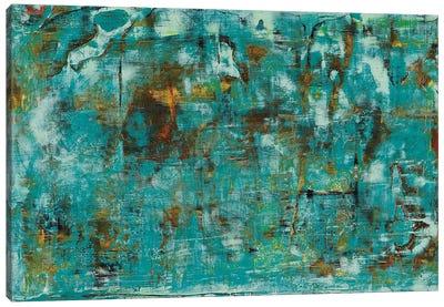 River Run I Canvas Art Print