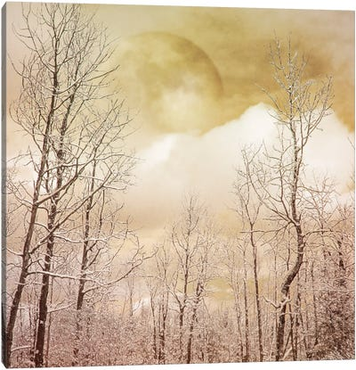 Golden Winter Forest II Canvas Art Print