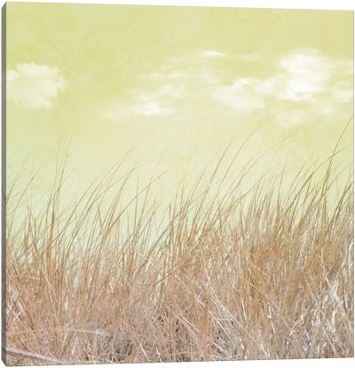 Grass And Cloud I Canvas Art Print