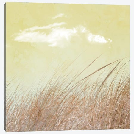 Grass And Cloud II Canvas Print #HHL23} by Hal Halli Canvas Print